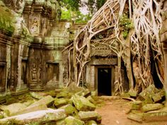 This was taken midday last summer during a visit to Cambodia in Siem Reap at Ta Prohm Temple. It is my favorite temple at Angkor Wat because they have left it pretty much as it was found (although … Ta Prohm, Abandoned Buildings, Abandoned Places, The Places Youll Go, Places To See, Temple Ruins, Vietnam Tours, South Vietnam, Angkor Wat