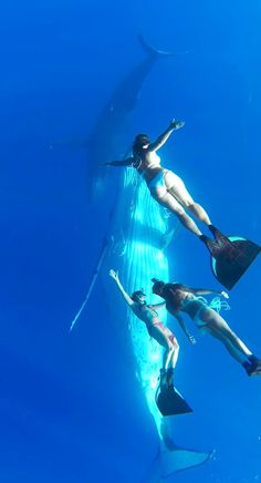 3 gorgeous women dance with whales in this transcendent GoPro stunner