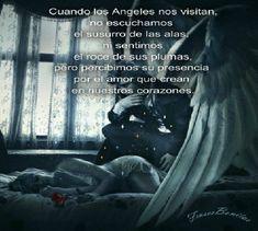 Frases Bonitas Para Todo Momento: Cuando los Angeles nos visitan, no escuchamos el susurro de las alas, ni sentimos el roce de sus plumas, pero percibimos su presencia por el amor que crean en nuestros corazones.