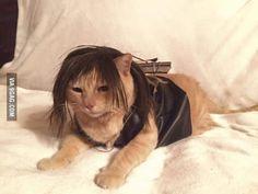 My friend's cat dressed as Daryl