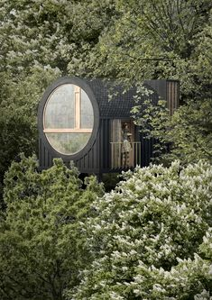 Competition, Treehouse, Image, Arch, Platform, Design, Happy, Architecture, Longbow