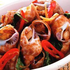 炒風螺食譜 - 頭足類及軟體族類料理 - 楊桃美食網 專業食譜