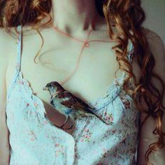 My bird is with my soul  sarah Almalky