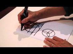John Muir Laws: How to draw plants: Symmetry 2/7