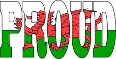 Proud to be Welsh Barafundle Bay, Cities In Wales, Welsh Words, Wales Rugby, My Father, Fathers, Visit Wales, Aberystwyth, Cymru