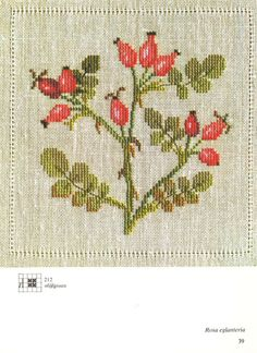 Gallery.ru / Фото #24 - Cross Stitch Pattern in Color - Mosca