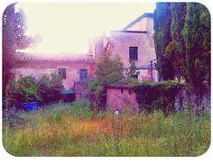 Irgendwo zwischen Chianni und Casciana Terme   #Toskana #Chianni #Urlaub #Ferienwohnung #FerieninderToskana #Sommer #Toscana #Tuscany #EssenReisenLeben www.facebook.com/EssenReisenLeben