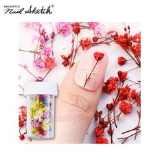 NAIL SKETCH Real Flower Gypsophila Preserved 1ea Best deal at Beauty Box Korea   NAIL SKETCH Real Flower Gypsophila Preserved 1ea