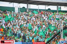 Torneo de Apertura / Temporada 2016-2017 / Domingo, 17 de Julio de 2016 / Estadio Corona / Afición Santos Laguna