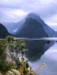 Queenstown Gardens, Queenstown New Zealand, Auckland New Zealand, Capital Of New Zealand, Lake Wakatipu, New Zealand Travel Guide, New Zealand South Island, Beautiful Places To Travel, Beautiful Islands