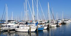 A peaceful, serene marina like this can be a death trap due electricity in the water. Electric Shock, Save Life, San Francisco Skyline, Fresh Water, Serenity, New York Skyline, Safety, Death, Security Guard