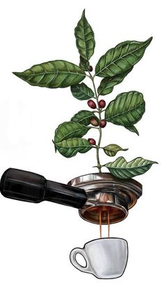 All Time Best Unique Ideas: Coffee Beans Menu coffee addict friday.Coffee Corner… All Time Best Unique Ideas: Coffee Beans Menu coffee addict friday. Coffee Drawing, Coffee Painting, Diy Painting, Painting Quotes, Coffee Cafe, Coffee Drinks, Coffee Shops, Coffee Mugs, Coffee Tables