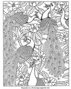 free printable dover coloring pages | Wild Oak Academy: Free Dover Coloring Pages
