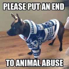 End animal abuse, don't put them in Cowboys sweaters! Nfl Jokes, Funny Football Memes, Funny Nfl, Funny Sports Memes, Sports Humor, Funny Memes, Football Humor, Football Stuff, Hilarious