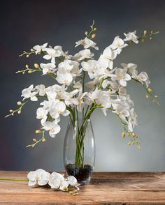 Shop Exotic Silk Orchid Arrangements & Plants at Silkflowers.com