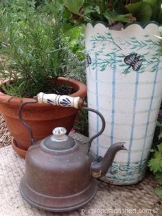 Teakettle for watering pots, www.purpelpottingshed.com