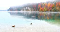 Nature Fall Autumn Bavaria Germany Lake Alpsee Neuschwanstein Fairytale King German Travel Photography Image www.northernvoyager.net Photo by Lee Mailer