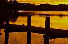 At the dock two; Churn Creek, Chesapeake Bay; Worton, Maryland, USA.  October 2013.