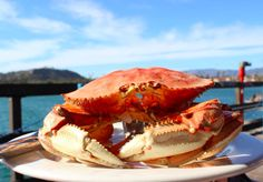 Compass + Twine   Decadent Dungeness Crab with a side of drawn buttah... always when at Santa Barbara Shellfish Company.