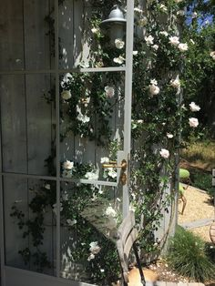 Detail of a Steel French door at Patina Farm (a modern farmhouse in Ojai, California by Giannetti Home) with climbing roses.