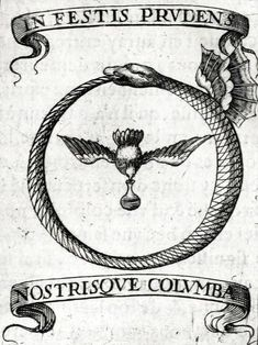 Ouroboros symbol meaning, history, and design – Serpent tattoo Occult Symbols, Occult Art, Occult Tattoo, Spiritual Symbols, Oroboros Tattoo, Arte Punk, Alchemy Art, Esoteric Art, Closet Designs