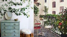 Skapa sommar hemma med gröna växter