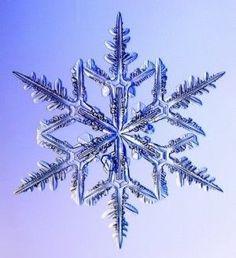 美しい雪の結晶画像集*【壁紙】