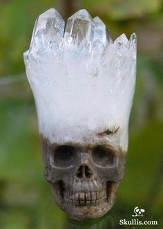 Quartz Rock Crystal Druse Crystal Skull http://www.skullis.com/Druse-Skulls-1.html