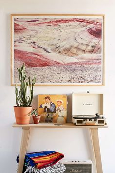 Red, yellow, cream, white, purple, pink. Plants. Record player. Warm, desert tones.
