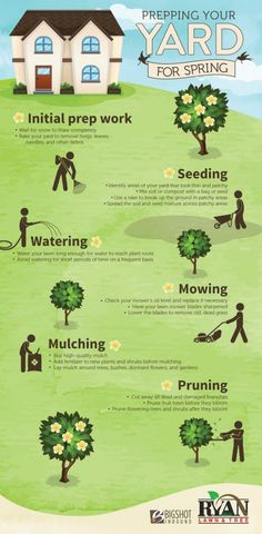 Spring Lawn Care Infographic