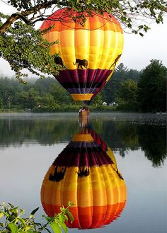 Pittsfield Balloon Rally 2009 by Heartlover1717, via Flickr