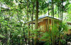 Jungle Walk accommodation - Thala Beach Lodge