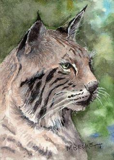 ACEO Original Painting Bobcat cat animal wildlife lynx predator #Impressionism