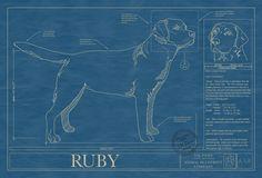 Pin by animal blueprint company on dog blueprints pinterest dog dog art blueprint malvernweather Gallery