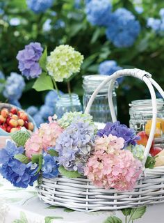 Hydrangea mix in basket, Ana Rosa.