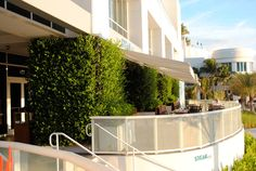 Steak 954 » GSky Plant Systems, Inc. - The leading provider of Green Walls in North America Green Walls, North America, Steak, Miami, Urban, Plants, Steaks, Plant, Planets