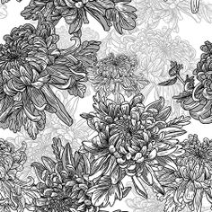 Floral black and white background with chrysanthemums Vintage pattern by Depiano, via Shutterstock White Pattern Background, Black And White Background, Black White, Graphic Patterns, Vintage Patterns, Graphic Design, Bird Graphic, White Patterns, Botanical Art