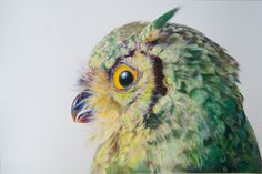 Pretty Pastel Owl Illustrations By John Pusateri - Bird Art