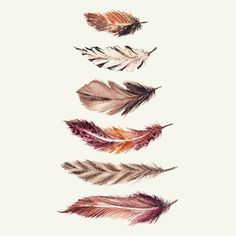Who else is always feeling the feather vibe??? ✌️✨print available on society6 #sketcheverydamnday #sketchbook #watercolor…