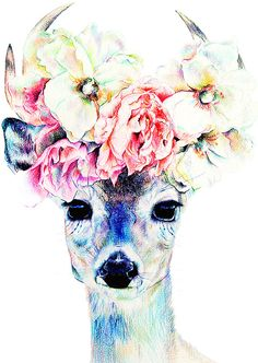 Deer with Flowers by Steph Chard