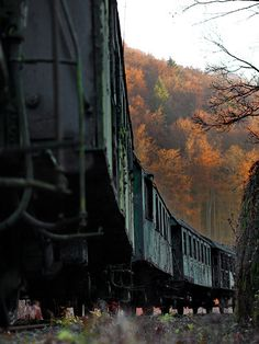 The lost train. Abandoned. Simply amazing!