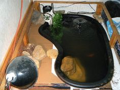 How to Build an Indoor Aquatic Turtle Pond -- I want this so bad.... :P