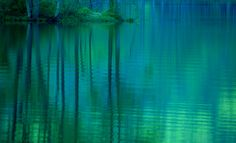 Fantasy forest by Yasuhito Shinagawa---would love to paint this think i just might!