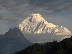 Majestic #Kangchenjunga the worlds third highest peak