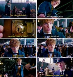 From The Fantastic Beasts and Where To Find Them NEW trailer