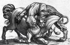 Combats d'animaux (n° 7) : Lion attaquant un cheval Auteur/exécutant - anonyme ; TEMPESTA Antonio (d'après) Précision auteur/exécutant-Florence, 1555 ; Rome, 1630 Ecole, Italie ; Italie (d'après) Période création/exécution - 1er quart 17e  Matériaux/techniques - papier, eau-forte, burin