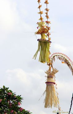 Galungan day is a religious holiday in Balinese Hindu when their God Almighty comes from heaven and even the souls of their ancestors come a...