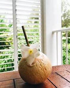 Start your morning organically, with nature's tropical drink & our biodegradable bamboo straw. Coconut Drinks, Biodegradable Products, Bamboo, Tropical, Pumpkin, Earth, Fruit, Vegetables, Store