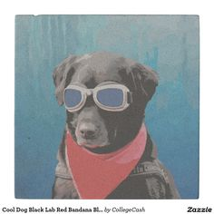 Cool Dog Black Lab Red Bandana Blue Goggles Stone Coaster SOLD on Zazzle