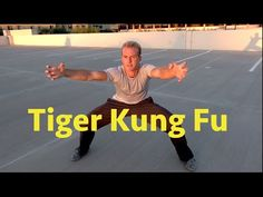 Tiger Kung Fu ... Wounded Tiger - YouTube